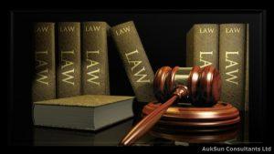 Directors legal and statutory responsibilities